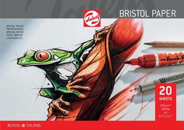 Talens papier Bristol, 250 g/m², ft 21 x 29,7 cm (A4)