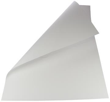 Folia carton photo, blanc, paquet de 10 feuilles